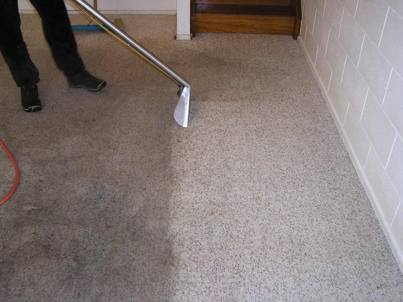 carpet-cleaners-a